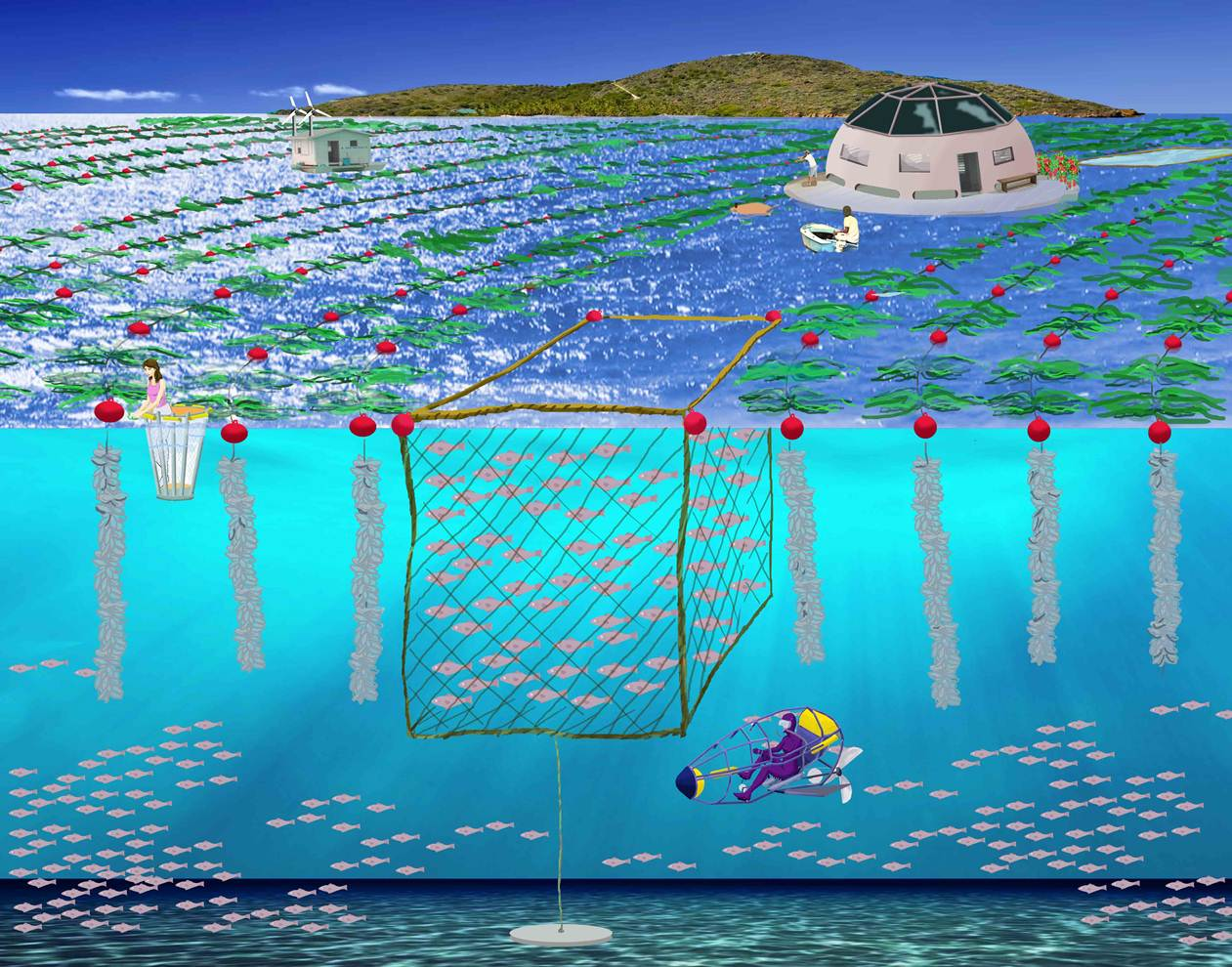 Near shore seasteading the beginning of seasteading s for Fish farm near me